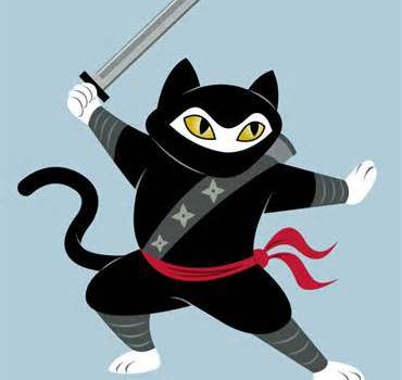 Today Is National Cat and Ninja Day In Japan