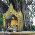 Shwedagon-00004