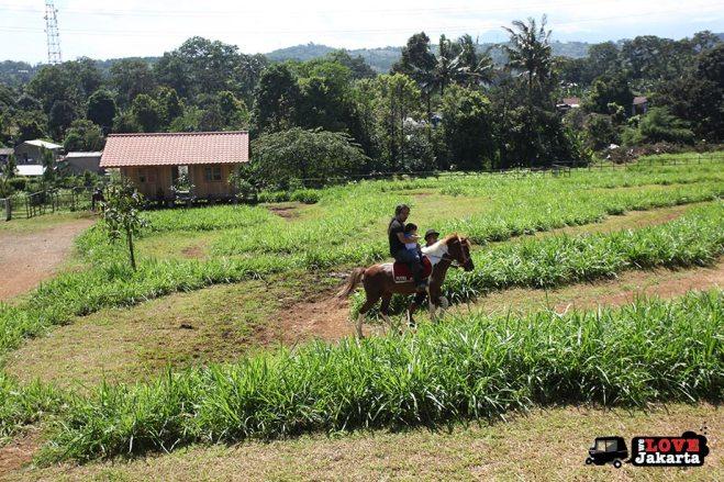 Horse rides at Kuntum Bogor_Quantum Nursery Bogor_Kuntum Farmfield Bogor_Tasha May_welovejakarta_we love jakarta_jakarta with kids_kids in indonesia_what to do with kids on the weekend in jakarta