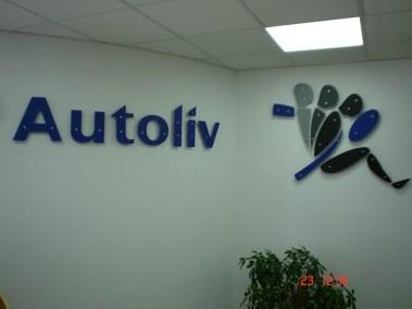 przestrzenna_autoliv_22