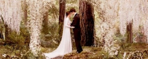 breaking-dawn-header1