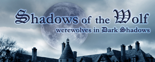shadows_wolf_top_graphic