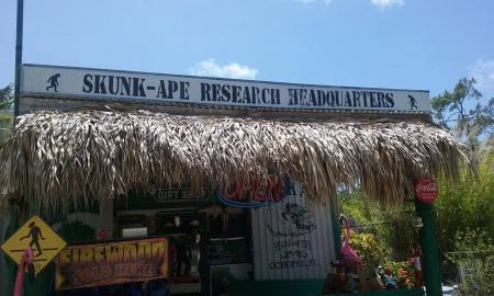 vacation 5-2016 PO and skunk ape SA exterior