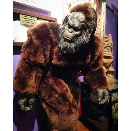 wolf's museum of mystery bigfoot3