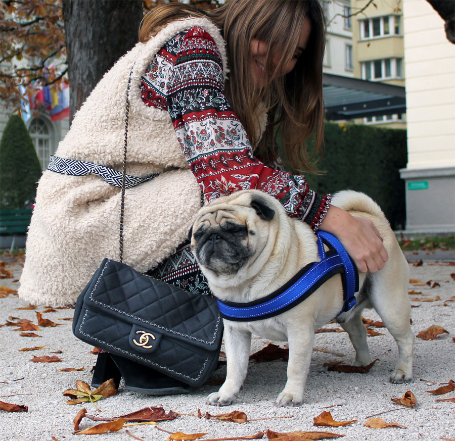 what-to-where-swiss-fashion-blogger-folk-hmconsciousfw15-12