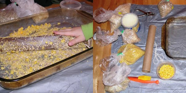 Paper roll bird feeder craft for kids