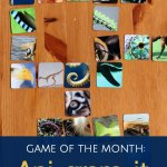Game of the Month: Ani-gram-it