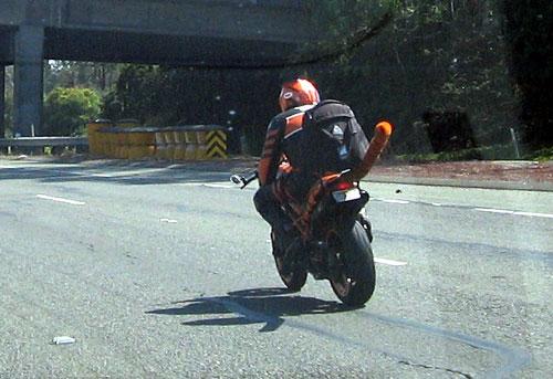 Tiger biker