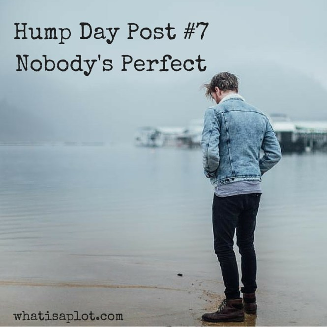 Hump Day Post #7: Nobody's Perfect