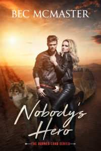 nobodys-hero-ebook