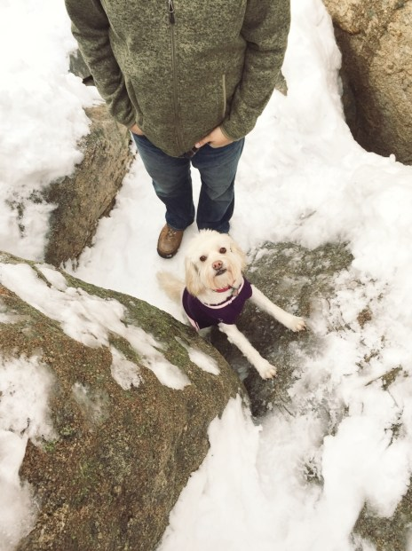 The icy rock wall she tried so desperately to climb.