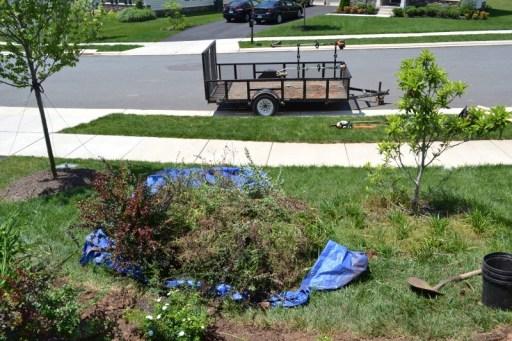 New Landscaping Reveal   Front Garden