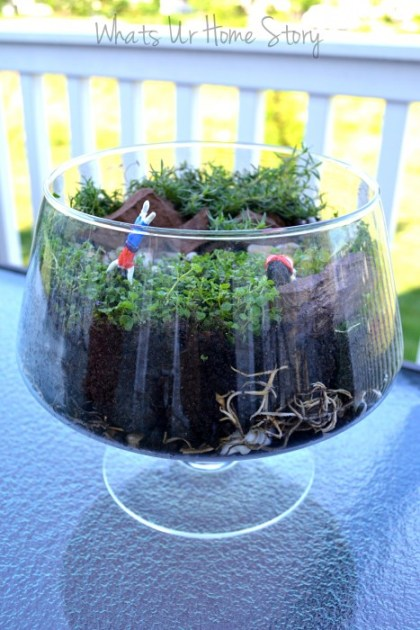 Whats Ur Home Story: How to make a terrarium, air dry clay figurines, corsican mint, Orange scented Thyme