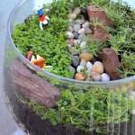 DIY Terrarium, Open jar terrarium, terrarium with clay figurines,How to make a terrarium, air dry clay figurines, corsican mint, Orange scented Thyme