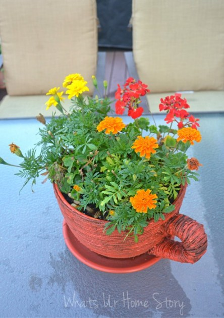 Whats Ur Home Story: Tea cup planter, marigolds in a planter