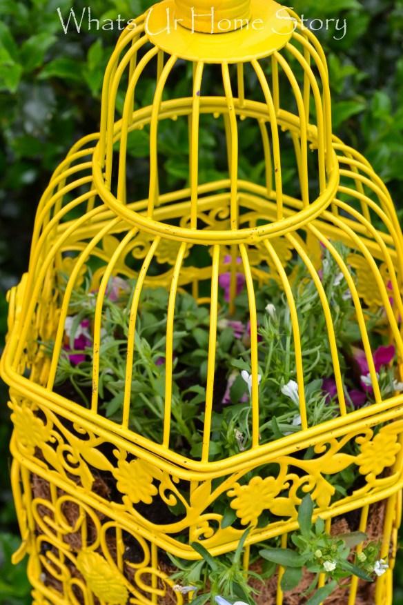 Bird Cage new uses