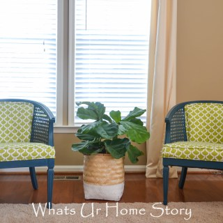 cane chair makeover with paint