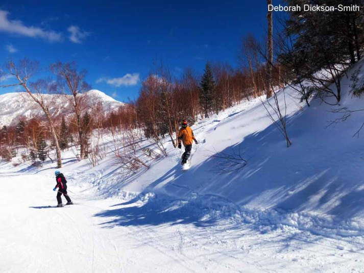 A choice of green, red and black runs on every mountain, Shiga Kogen.