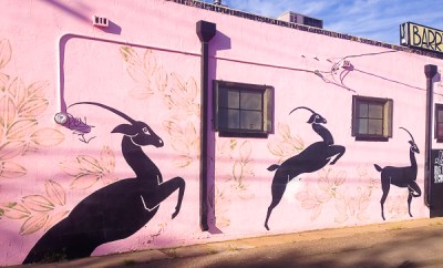 {So much beautiful street art alongside Route 66 in ABQ (in Kat's parents' historical neighborhood) including this one on the side of her favorite vintage clothing store.}
