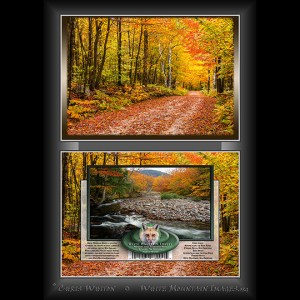 #3005 Autumn Road Notecard