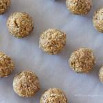Fig Protein Balls