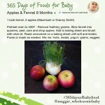 365babyfoodsapplesandfennel