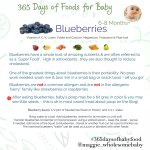 365babyfoodsBlueberries