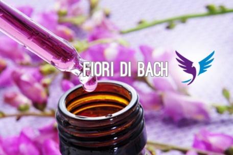 fiori_bach