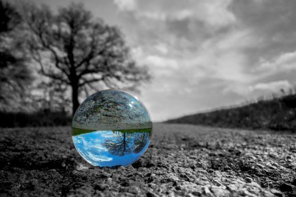 ecologia-ambiente-sostenibilita-natura-sfera-by-stefan-fotolia-750-600x400
