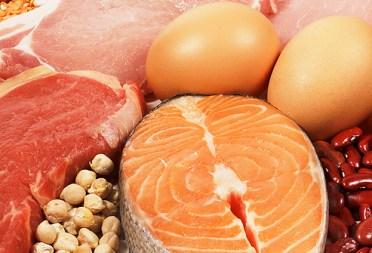 highproteinmeats