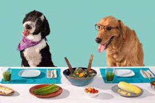 hungrydogs