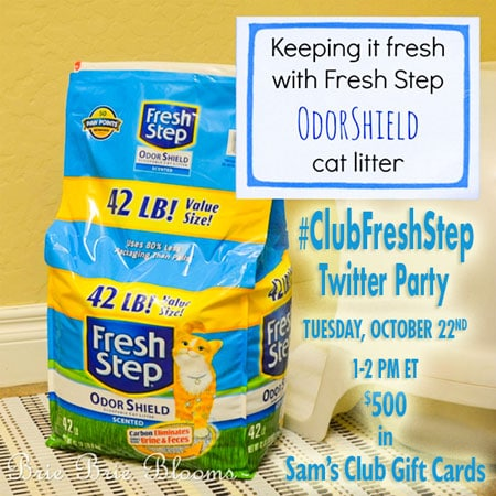 #ClubFreshStep Twitter Party