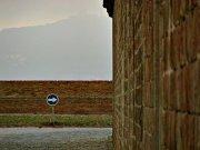 BrickWalls-m