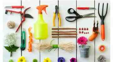 Help My Landscape! 10 Garden & Lawn Tips for the New Homeowner