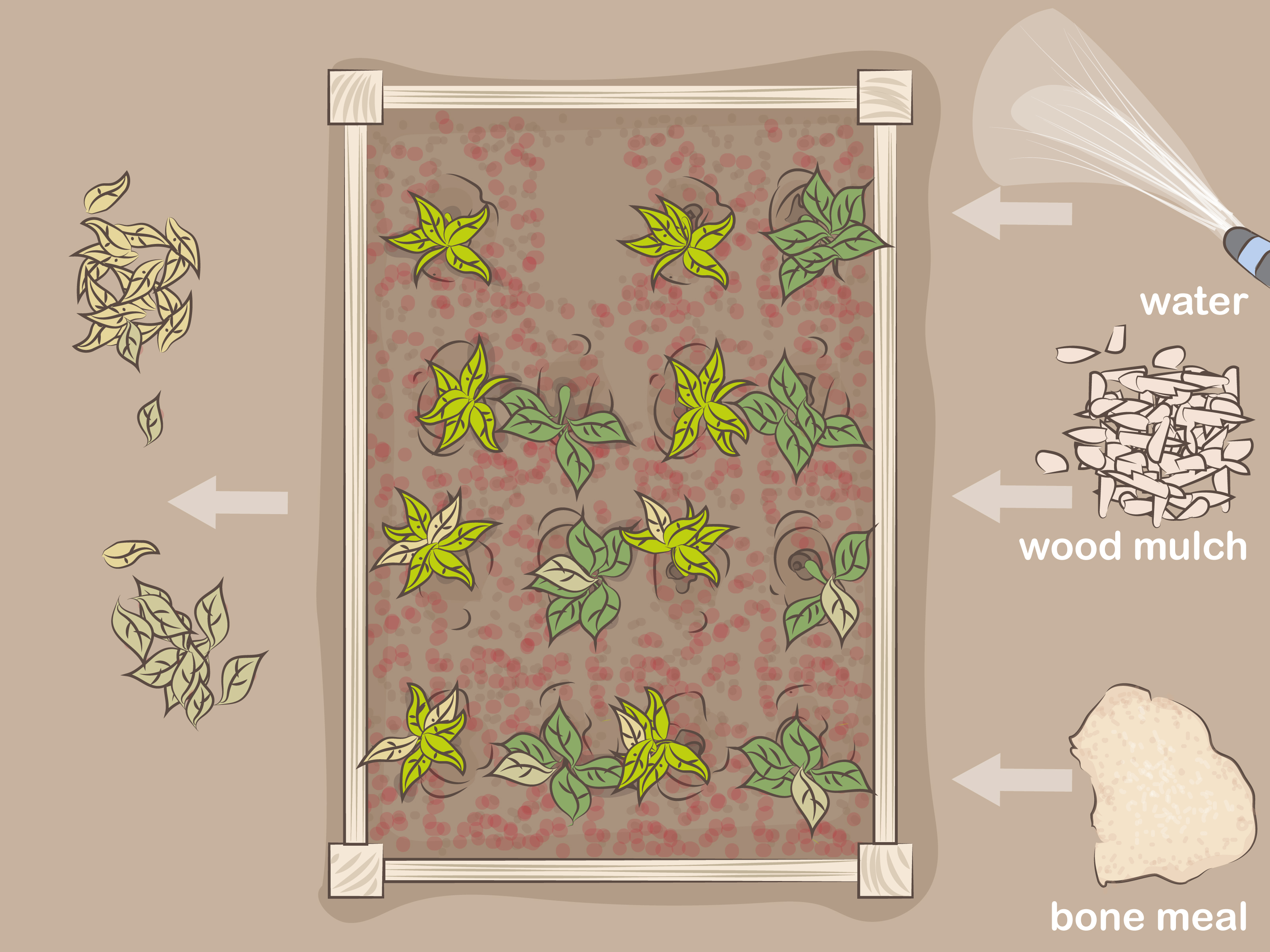 Assorted How To Use Blood Steps Wikihow Blood Meal Fertilizer Rabbits Blood Meal Fertilizer Dogs houzz-03 Blood Meal Fertilizer