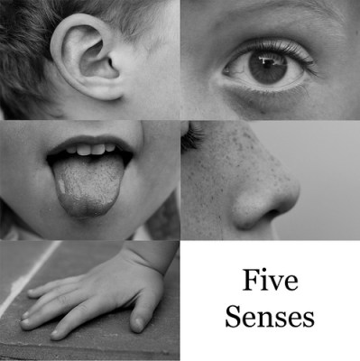 The Five Senses - To notice things you can be grateful for, open up your senses and experience things afresh.