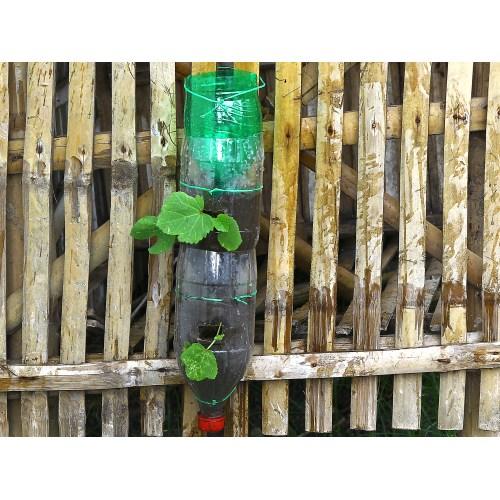 Medium Crop Of Soda Bottle Vertical Garden