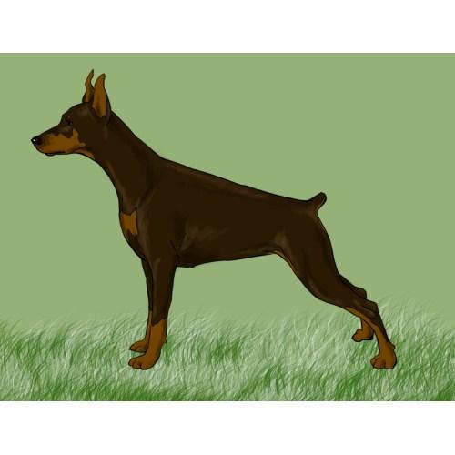 Medium Crop Of Realistic Dog Drawing