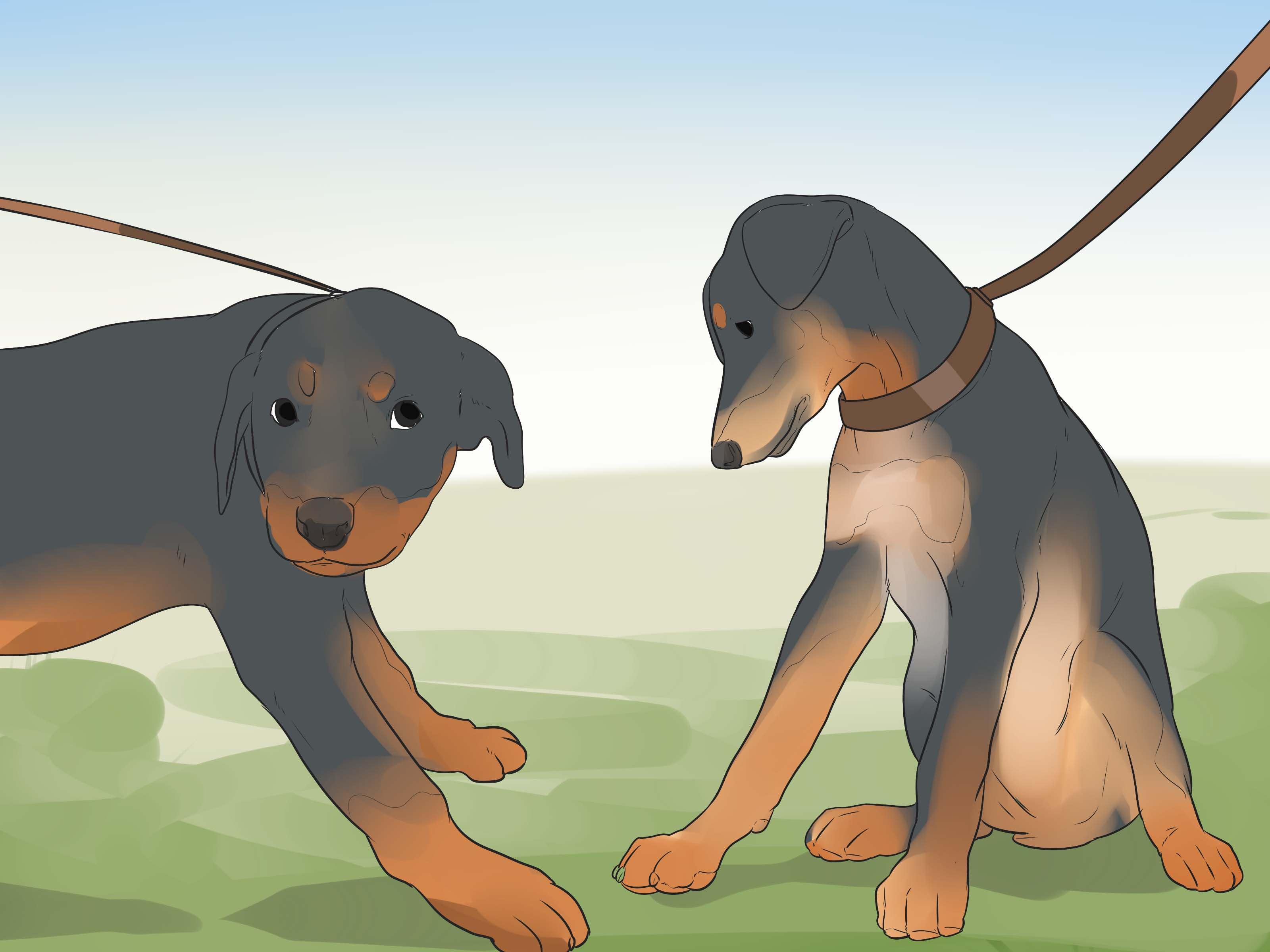 Especial Care Allergies A Rottweiler Puppy Step 14 How Often Should You Ba Your Dog Yahoo How Often Should You Ba Your Dog bark post How Often Should You Bathe Your Dog