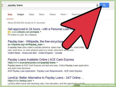 How to Get a Payday Loan Online: 14 Steps (with Pictures)