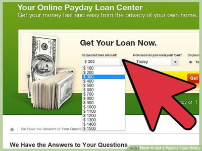 How to Get a Payday Loan Online: 14 Steps (with Pictures)