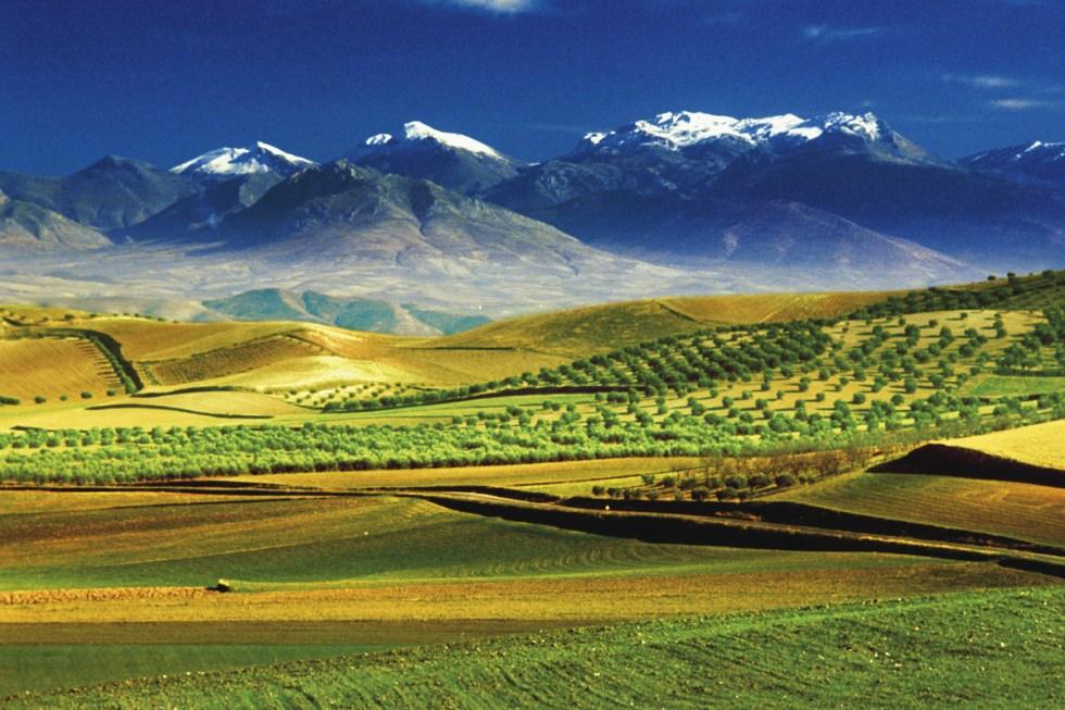 Fotogalerij: 10 Natuur Paradijsjes In Andalusië