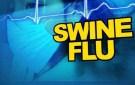 What is swine flu