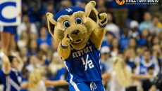 Kentucky Wildcats - photo by Walter Cornett