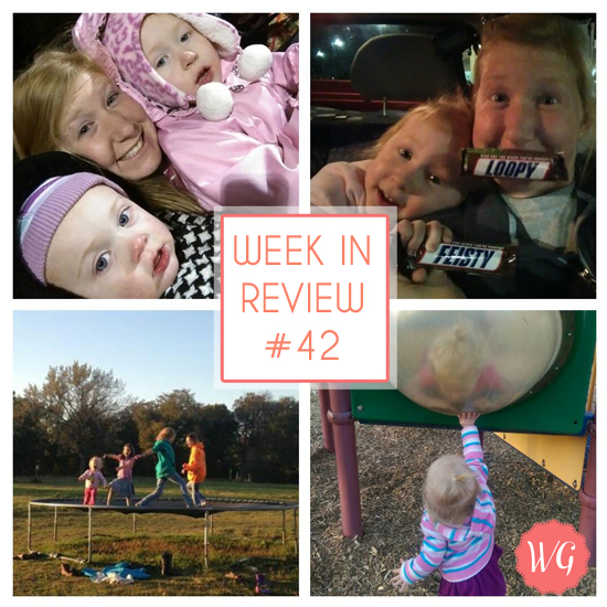 WkinReview_42