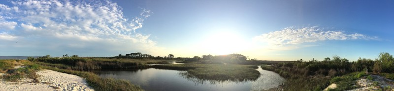 Salt marshes abound. Rich in life, they're equally rich in beauty.