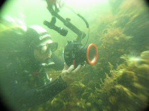 Wil fotografeert onder water