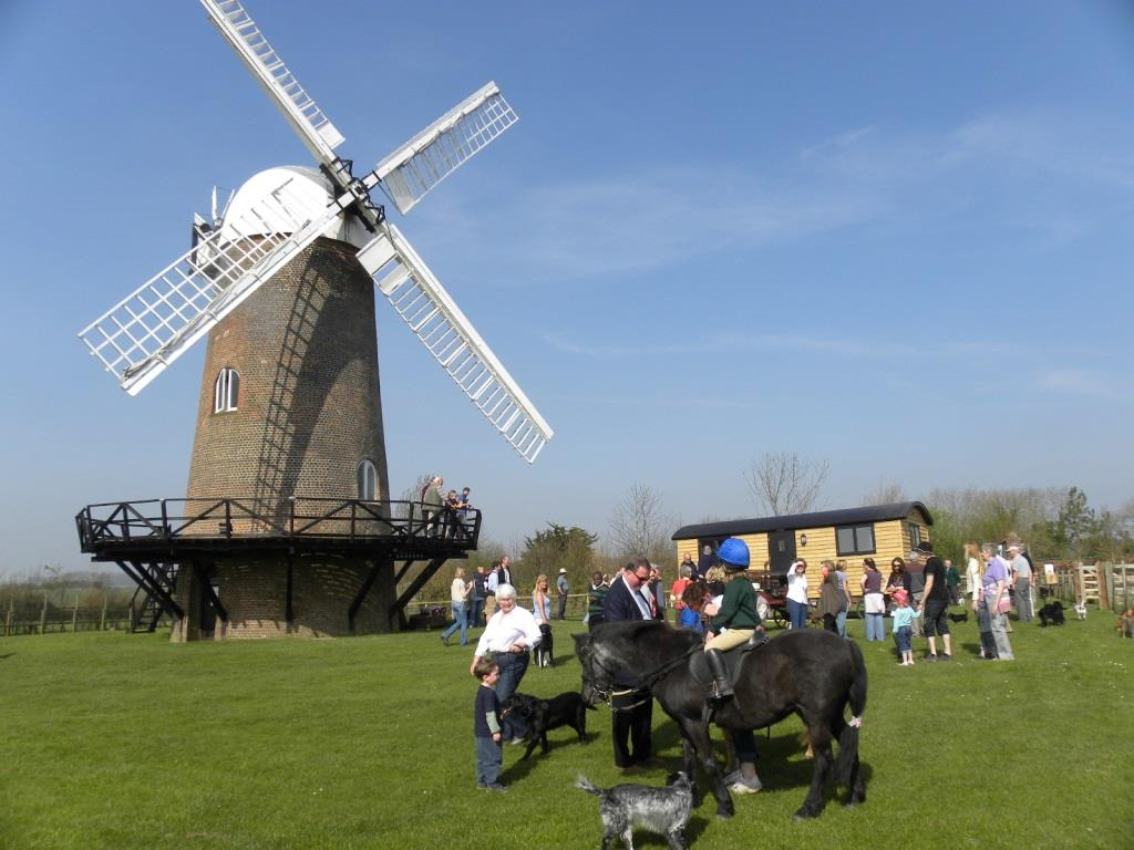 Windmill Education Resources