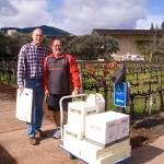 Trading wine at robert mondavi