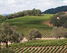 september weather in wine country